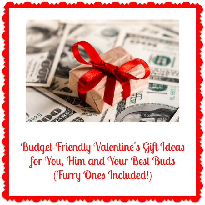 Budget-Friendly Valentine's Gift Ideas for You, Him and Your Best ...