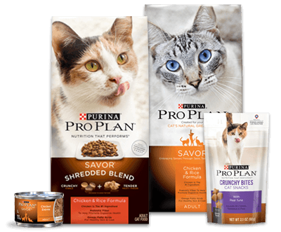 purina pet food life cycle Cat chow offers a variety of dry cat food formulas 99% of all purina pet food products it's one more way we're helping you and your cat share a better life.